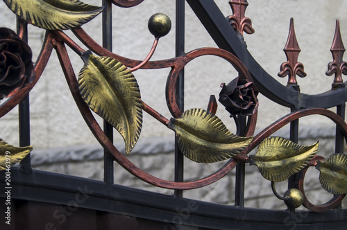 Decorative leaves forged from iron on a metal fence
