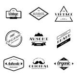Set of Vintage Badge Vector Logo - 208464702