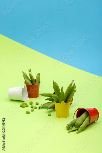 Still life with buckets and green peas on a colored background - 208465982