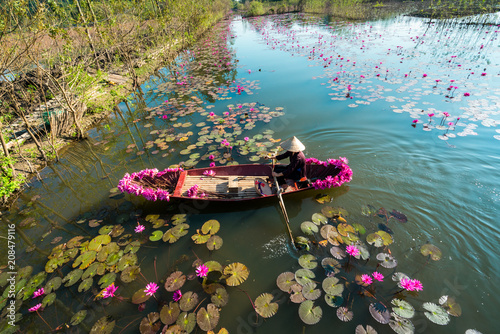 Plexiglas Zwart Yen river with rowing boat harvesting waterlily in Ninh Binh, Vietnam