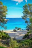 Bucht auf Mallorca - 208481373