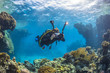 Diver with video camera near the coral reef, Red Sea, Egypt