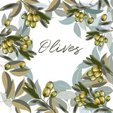 Floral vector clean illustration with olive plant and green leafs - 208485927