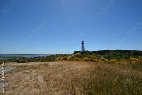 Fotobehang Vuurtoren Leuchtturm auf der Insel Hiddensee, Am Dornbusch