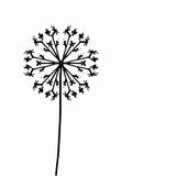 Pusteblume – Löwenzahnsamen – spätsommerliches Ornament