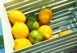 Wooden box with lemons and lime for cooking mojito
