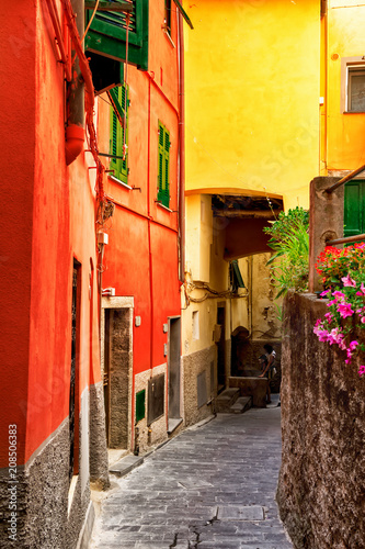 Bright old street with colorful architecture in Riomaggiore, Cinque Terre, Italy. Narrow lane. - 208506383