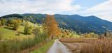 herbstlicher Spazierweg bei Unterammergau, grüne Hügel und Moorlandschaft - 208508520