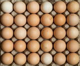 Overhead view of free range organic chicken eggs in tray. Some eggs are dirty.  - 208513570