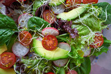 Avocado salad with sprouts tomatoes spinach - 208527329