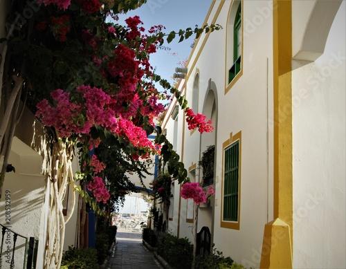 balcon canario © Guadafret