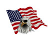 american eagle in sunglasses on american flag background