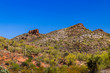 Rugged hillside in Arizona's Sonoran desert in springtinme; bright red and white earth is covered with giant Saguaro cacti, prickly pear and other native plants; The deep blue desert sky is overhead.