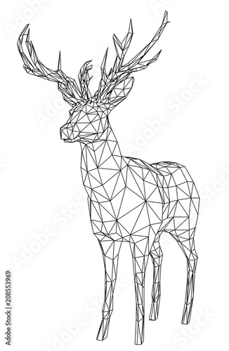 Aluminium Hipster Hert Deer polygonal lines illustration. Abstract vector deer on the white background