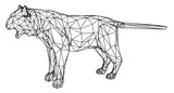 Tiger polygonal lines illustration. Abstract vector tiger on the white background