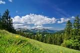 Landschaft und Natur in den Alpen, Bayern - 208563718