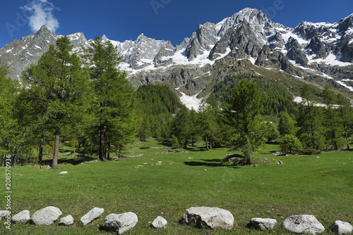 Aluminium Bergrivier Landscape of Italian Alps in spring season with forest of larches
