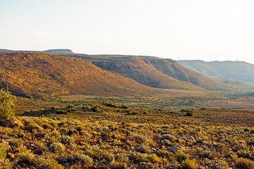 Brown hills in evening