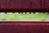 closeup on wet wooden boards with water drops on it after rain - 208627967