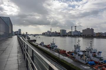 Port of Niigata and Sinano River after rain © Евгений Степаненко