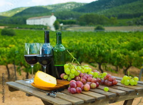 Red wine, cheese and grapes against vineyard