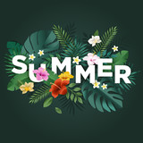 Summer vector illustration concept for background, web and social media banner, summertime card, party invitation template. Lettering summer concept with natural elements. - 208660527