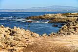 Asilomar State Marine Reserve California - 208684121