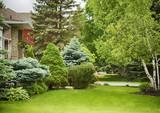 Home garden in summer time. - 208693384
