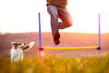 Mann springt über eine Hürde, Welpe oder kleiner Hund läuft nebendran - 208696300