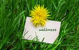 Wellness - 208703334