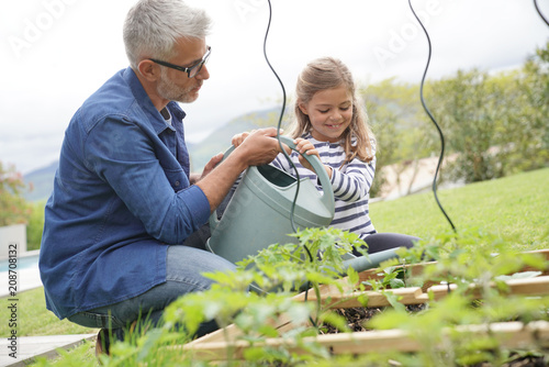 Foto Murales Father and daughter gardening together, home vegetable garden
