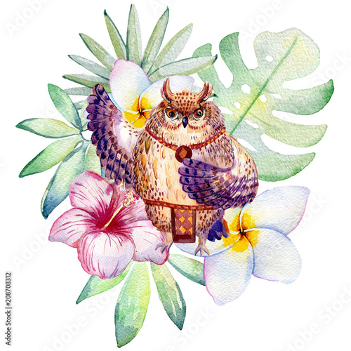dancing owl with tropical plants, watercolor illustration isolated on white background. - 208708312