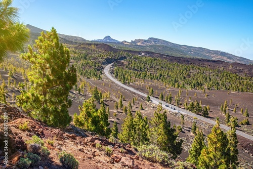 Fotobehang Zalm road in the mountains of Tenerife