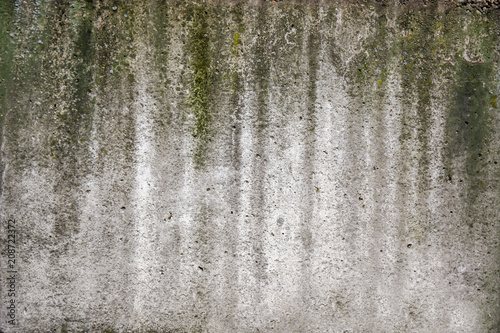 Canvas Betonbehang Concrete wall grees moss outdor building texture wallpepr