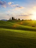 village in tuscany; Italy countryside landscape with Tuscany rolling hills ; sunset over the farm land - 208724764