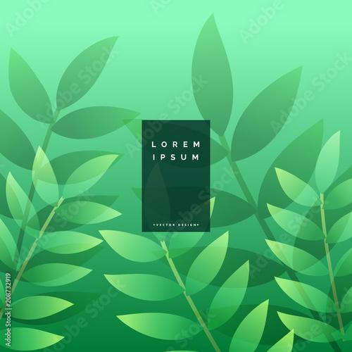 green leaves eco background design