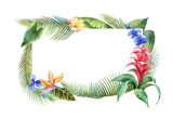 Watercolor vector banner with tropical leaves and bright exotic flowers isolated on white background. - 208741595