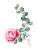 Watercolor vector hand painting illustration of peony flowers and green leaves. - 208741703