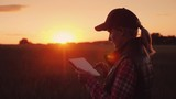 A female farmer is working in the field at sunset, enjoying a tablet. Technologies in agrobusiness - 208741796