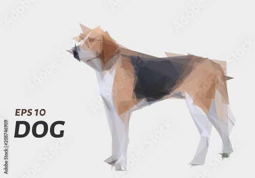 Fototapeta A dog made of triangles. Low poly dog. Vector illustration.