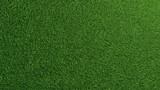 Gras Rasen Textur von oben - 208755902