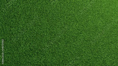Leinwandbild Motiv Gras Rasen Textur von oben