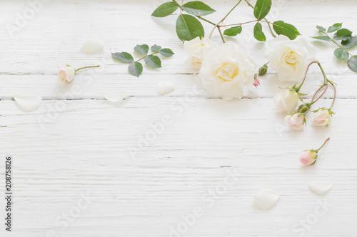 Leinwanddruck Bild roses on white wooden background