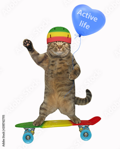 Aluminium Skateboard The cat in the protective helmet holds a blue balloon and rides a skateboard. White background.