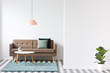 Brown sofa, pillows, coffee table and lamp in a living room interior next to an empty wall and plant. Place for your poster or furniture