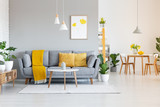 Orange blanket on grey sofa in modern apartment interior with poster and wooden table. Real photo - 208767949