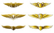 Winged golden badges awards set