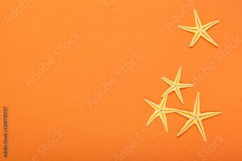 Rozgwiazdy na jaskrawym kolorowym wibrującym tle