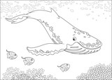 Hump-backed whale swimming near a reef, black and white vector illustration for a coloring book