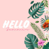 Hello summer vector illustration for background, mobile and social media banner, summertime card, party invitation template. Lettering summer concept with natural elements. - 208810558